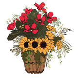 Flowers in basket. Vector hand drawn bouquet of wildflowers in a basket Stock Photos