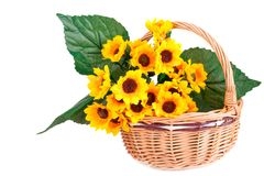 Flowers in basket. Yellow fabric flowers in wicker basket isolated on white background Stock Photo
