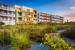 Flowers and beachfront buildings in Folly Beach, South Carolina. Stock Images
