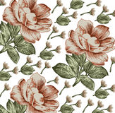 Flowers peonies pattern. Realistic isolated flowers. Vintage baroque background. Wallpaper. Drawing engraving.  Royalty Free Stock Image
