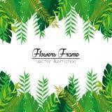 Flowers beautiful frame decorative Stock Image