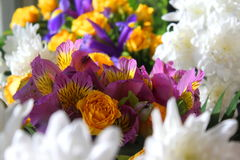Flowers Stock Images