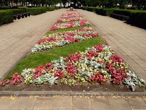 Flowers Beds in the center of Stock Photography