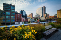 Flowers, bench, and view of buildings in Chelsea from The High L Stock Images
