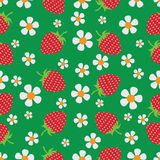Flowers and berries. Strawberry. Stock Image