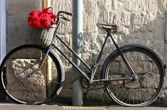 Flowers on a bicycle stock photo
