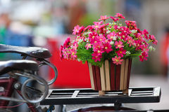 Flowers on bicycle Royalty Free Stock Image