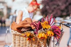 Flowers in a bicycle basket stock photography