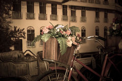 Flowers on a bicycle Royalty Free Stock Photos