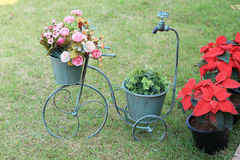 Flowers in bicycle vase Royalty Free Stock Photo