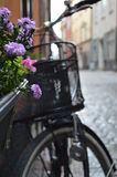 Flowers and bicycles Royalty Free Stock Photos