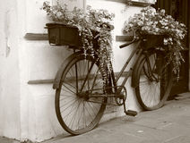 Flowers at bike, retro style royalty free stock image