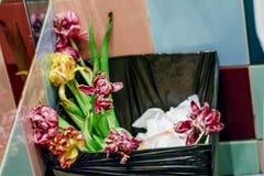 Flowers in bin Stock Image