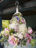 Flowers in bird cage Royalty Free Stock Photography