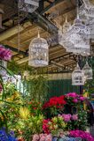 Flowers and bird cages in Paris. Flowers and bird cages in the marche aux fleurs in Paris Royalty Free Stock Images