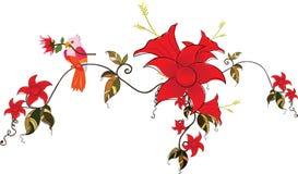 Flowers and bird. Illustration of bird and flowers.Border decoration vector illustration