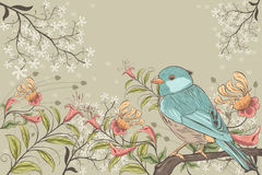 Flowers and bird Stock Image