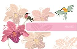 Flowers and birds Royalty Free Stock Photos