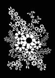 Flowers on a black background. The composition of flowers and plants. Rustic design. Black and white drawing. Vector illustration Stock Images