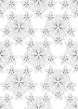 Flowers, black and white abstract  seamless pattern. Stock Image