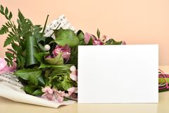 Flowers and blank greeting card stock images