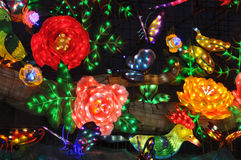 Flowers are in bloom. Zigong dinosaur Lantern Festival in China.During the Spring Festival in 2014 Royalty Free Stock Image