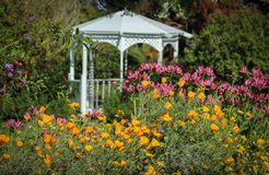 Flowers Blooming at the South Coast Botanic Garden, Palos Verdes Peninsula, Los Angeles County, California. Flowers bloom in front of a pretty white gazebo at royalty free stock photos