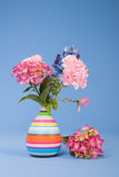 Flowers on blue background Royalty Free Stock Image