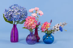 Flowers on blue background Stock Photography