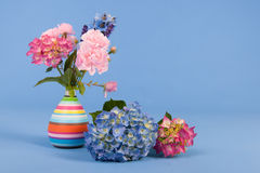 Flowers on blue background Royalty Free Stock Images