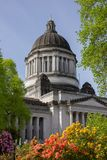 Flowers and blue sky surround Washington State Capitol. stock image