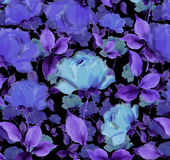 Flowers blue velvet  Watercolor oil painting textured seamless background. Roses dark mysterious  seamless wallpaper Exploding blue  painterly textured abstract Stock Photography