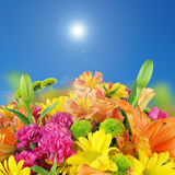 Flowers and blue sky background Royalty Free Stock Photos