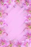 Flowers. Blurred background with lily frame stock illustration