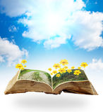 Flowers book. Collage of flowers on the grass, growing from a book in the sky Royalty Free Stock Image