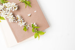 Flowers and a book Royalty Free Stock Photography