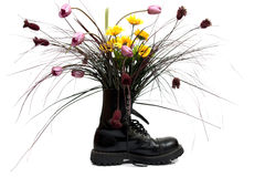 Flowers are in a boot Stock Photos