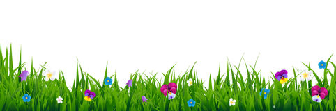 Flowers Border. With Gradient Mesh, Vector Illustration Royalty Free Stock Image
