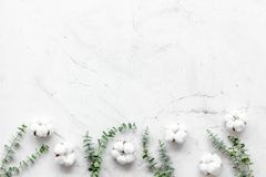 Flowers border with green eucalyptus and dry cotton on white stone background top view space for text. Blog mockup. Flowers border with green eucalyptus branches stock photo