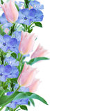 Flowers border on pink background Royalty Free Stock Photo