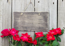Flowers bordering blank rustic wooden sign hanging on fence. Flower border of red roses by blank rustic wooden sign hanging on wood background Stock Photos
