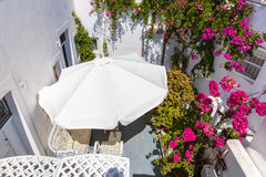 Flowers bougainvillea in Fira town - Santorini ,Crete,Greece. Royalty Free Stock Photography
