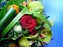 Flowers Bouquet. A beautiful bouquet of flowers, red rose in the centre and blue backdrop Stock Images