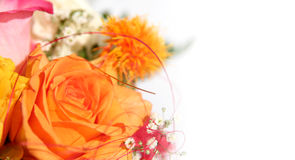 Flowers Bouquet. Bouquet of mixed roses isolated on white background Royalty Free Stock Image