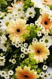 Flowers bouquet Stock Image