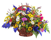 Flowers bouquet arrangement centerpiece in wicker basket isolate Stock Image