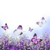 Flowers in a bouquet, blue hydrangeas Royalty Free Stock Photo