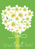 Flowers bouquet card Royalty Free Stock Photo