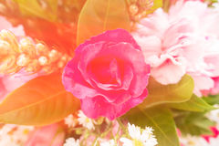 Flowers bouquet , dream soft style Royalty Free Stock Image