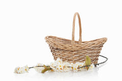 Flowers. Bouquet of flowers in basket  on white Royalty Free Stock Photography